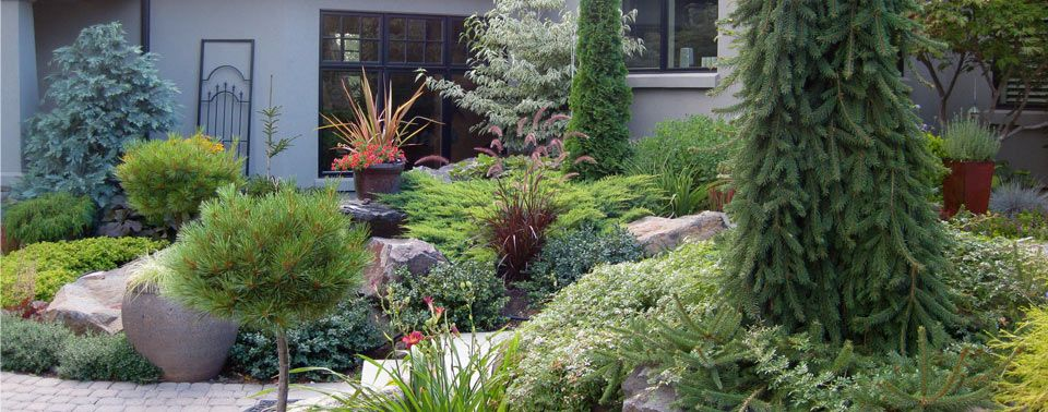 Conifer Garden Design Ideas for Front Yard Spokane Landscape
