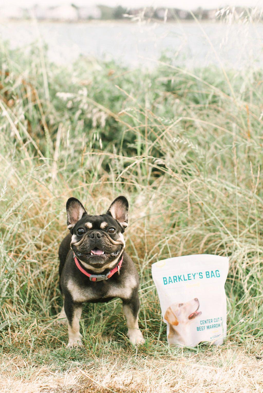 English Bull Dog Barkley S Bag Raw Beef Marrow Bone Dog Treats