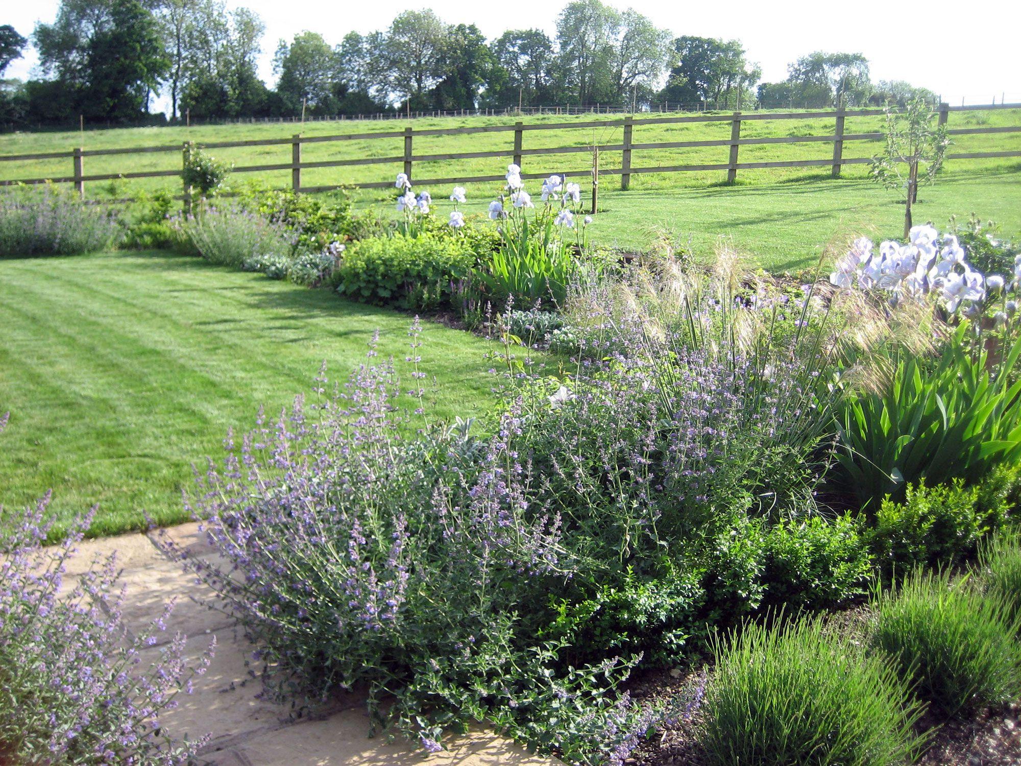 elements garden design garden designs brisbane small garden plant