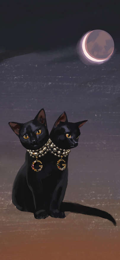 Moon of Gucci of brand of black cat luxury Wallpapers for