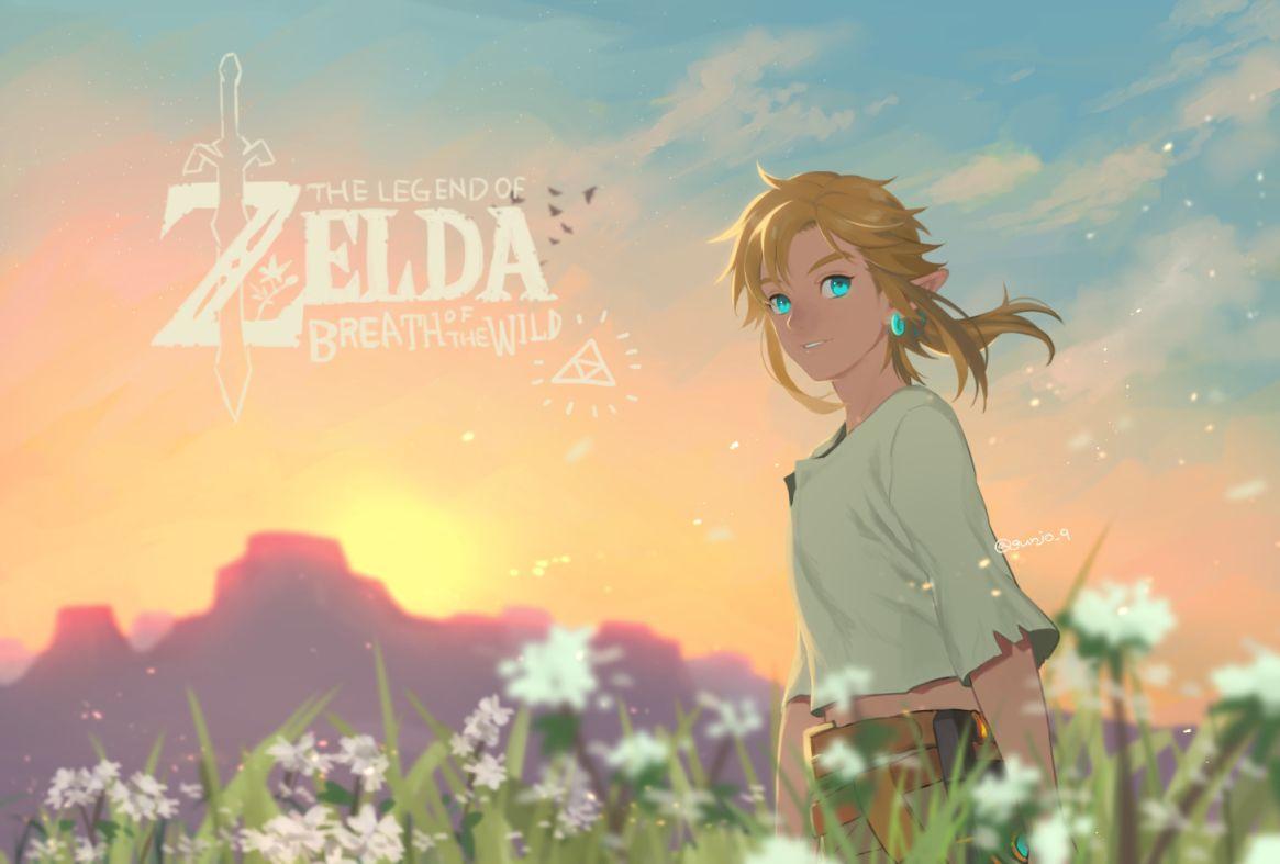 Tloz Botw Link Legend Of Zelda Breath Legend Of Zelda Breath Of The Wild