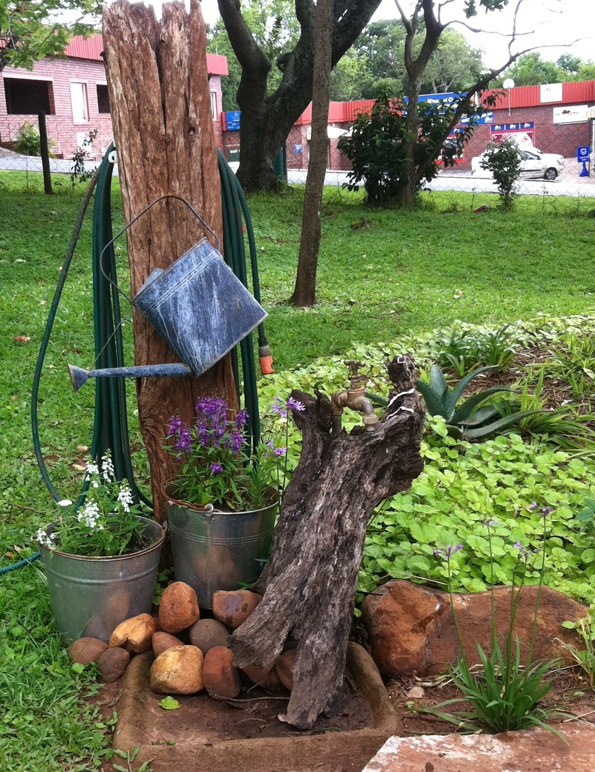 I disguised an ugly tap in our garden | Gardening Ideas | Pinterest