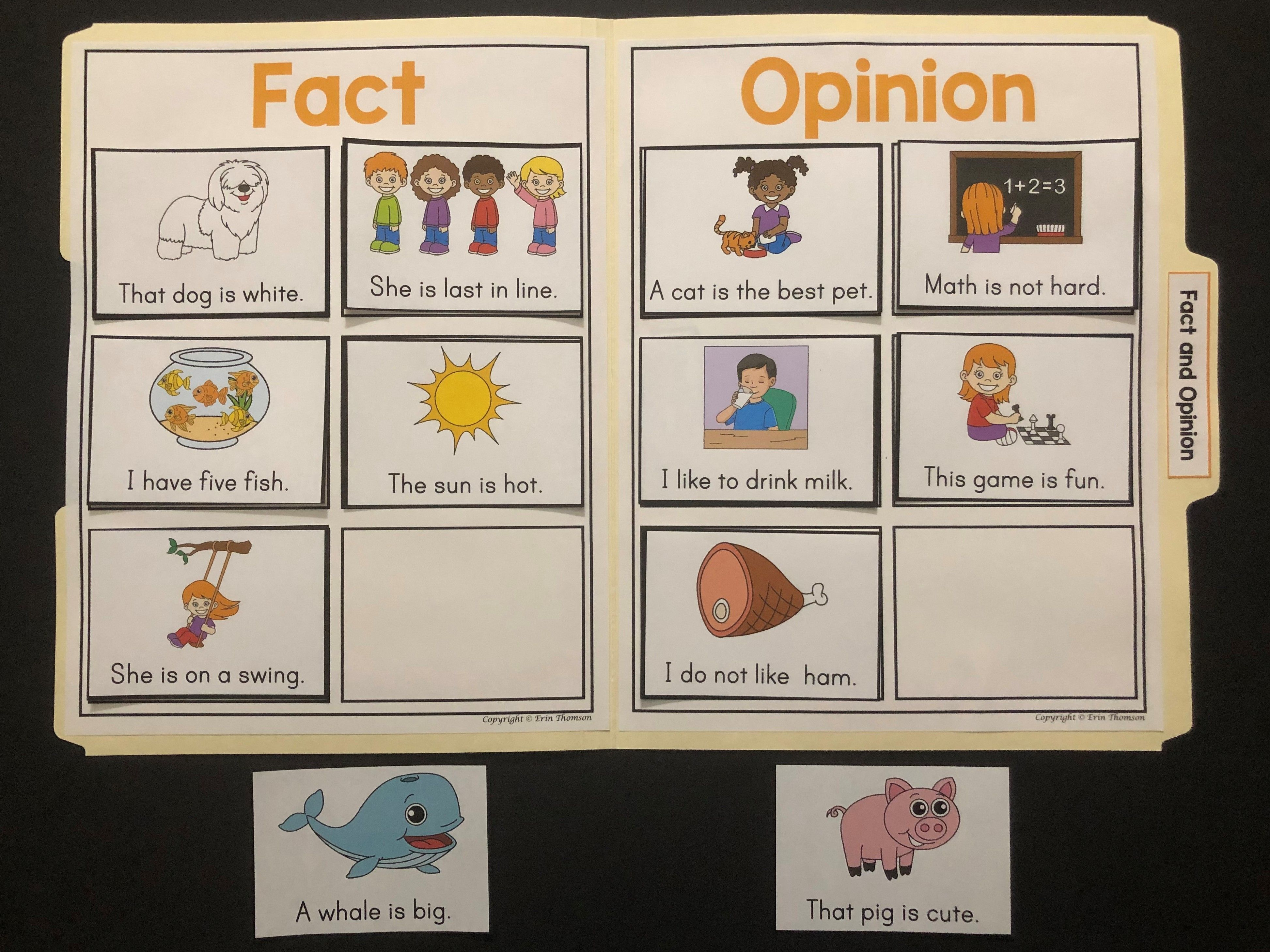 Language Arts File Folder Activity Fact And Opinion