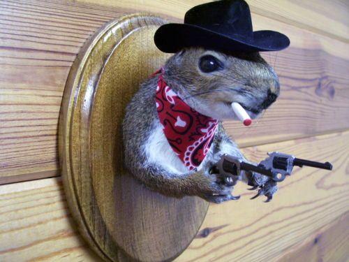 Cowboy Bad Jokes