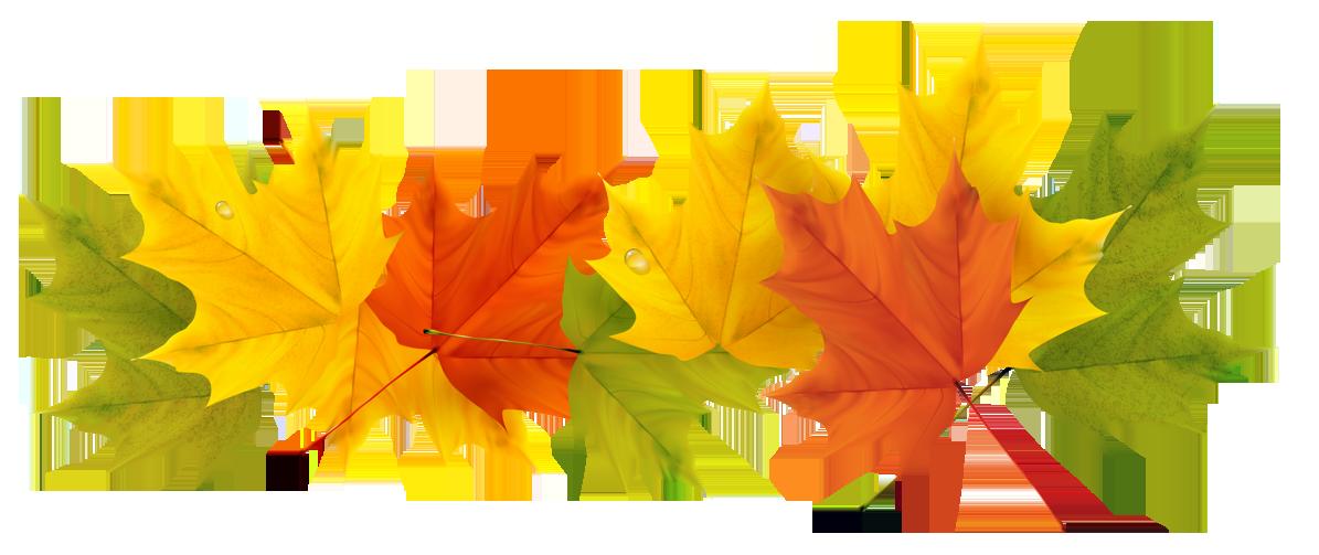 Bildresultat för autumn leaves png