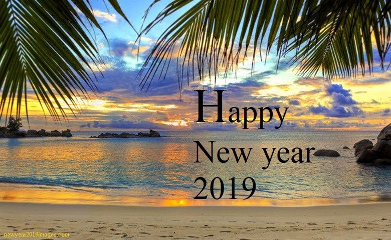 Image result for happy new year on the beach 2019