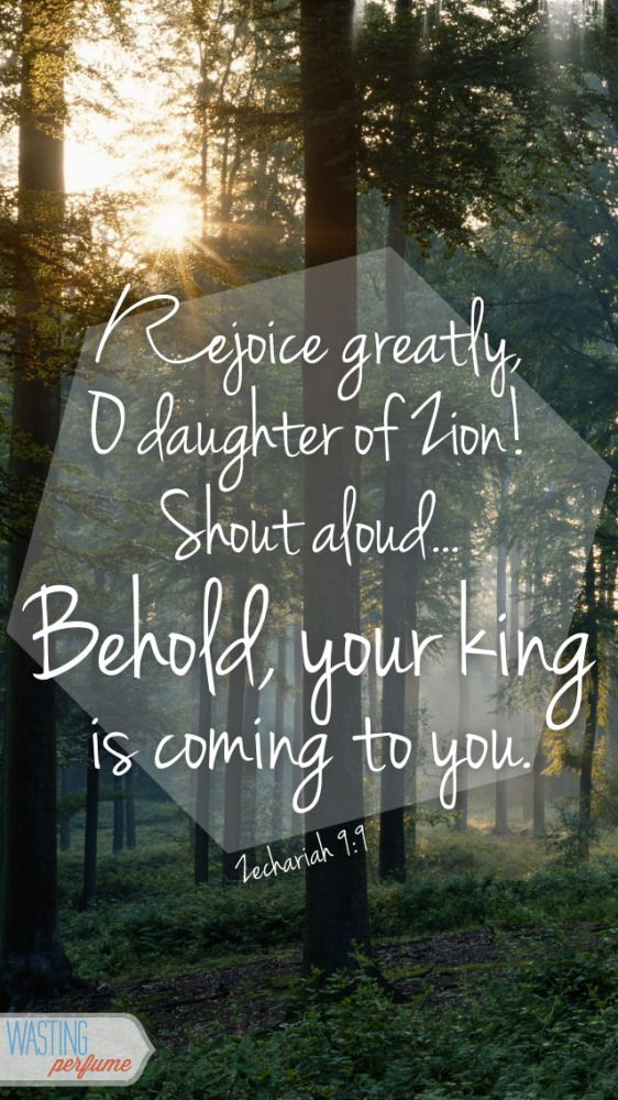 Rejoice greatly oh daughter of Zion, your king is coming to you!