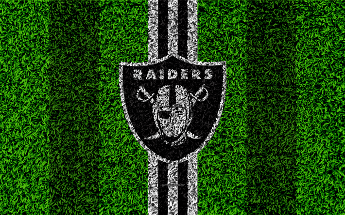 Download wallpapers Oakland Raiders, logo, 4k, grass