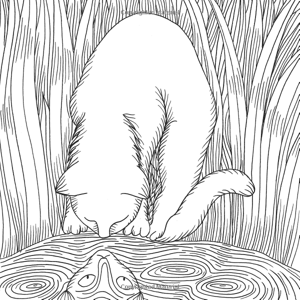 Cats (Colouring for Mindfulness): 9780600633020: Amazon ...