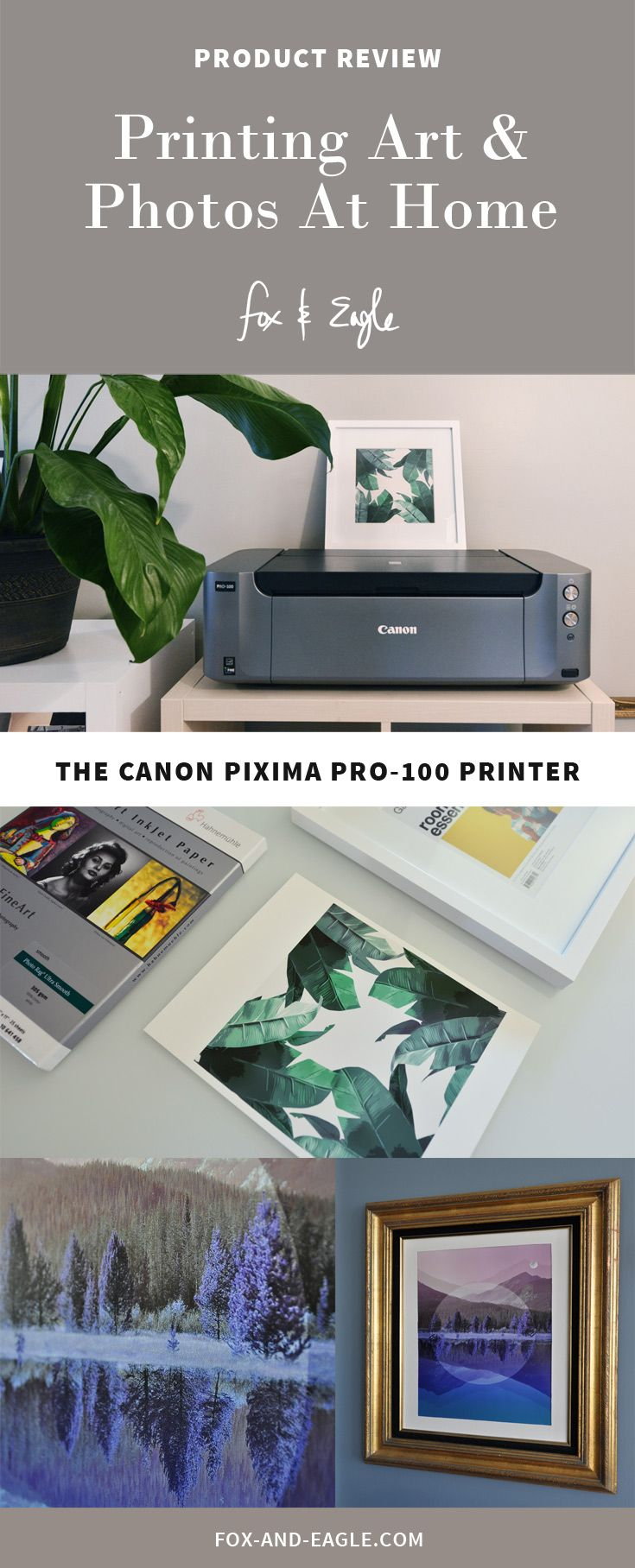Canon Pro 100 For Printing Art Photography At Home Fox And Eagle Prints Art Photography Photography