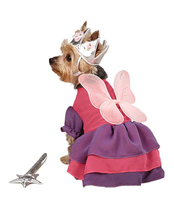 take a look at this purple fairy princess pet costume on zulily today