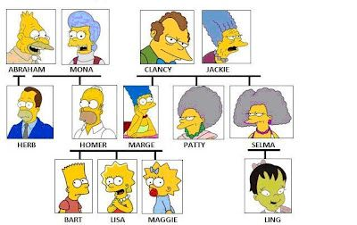 Biologie Homer Simpson
