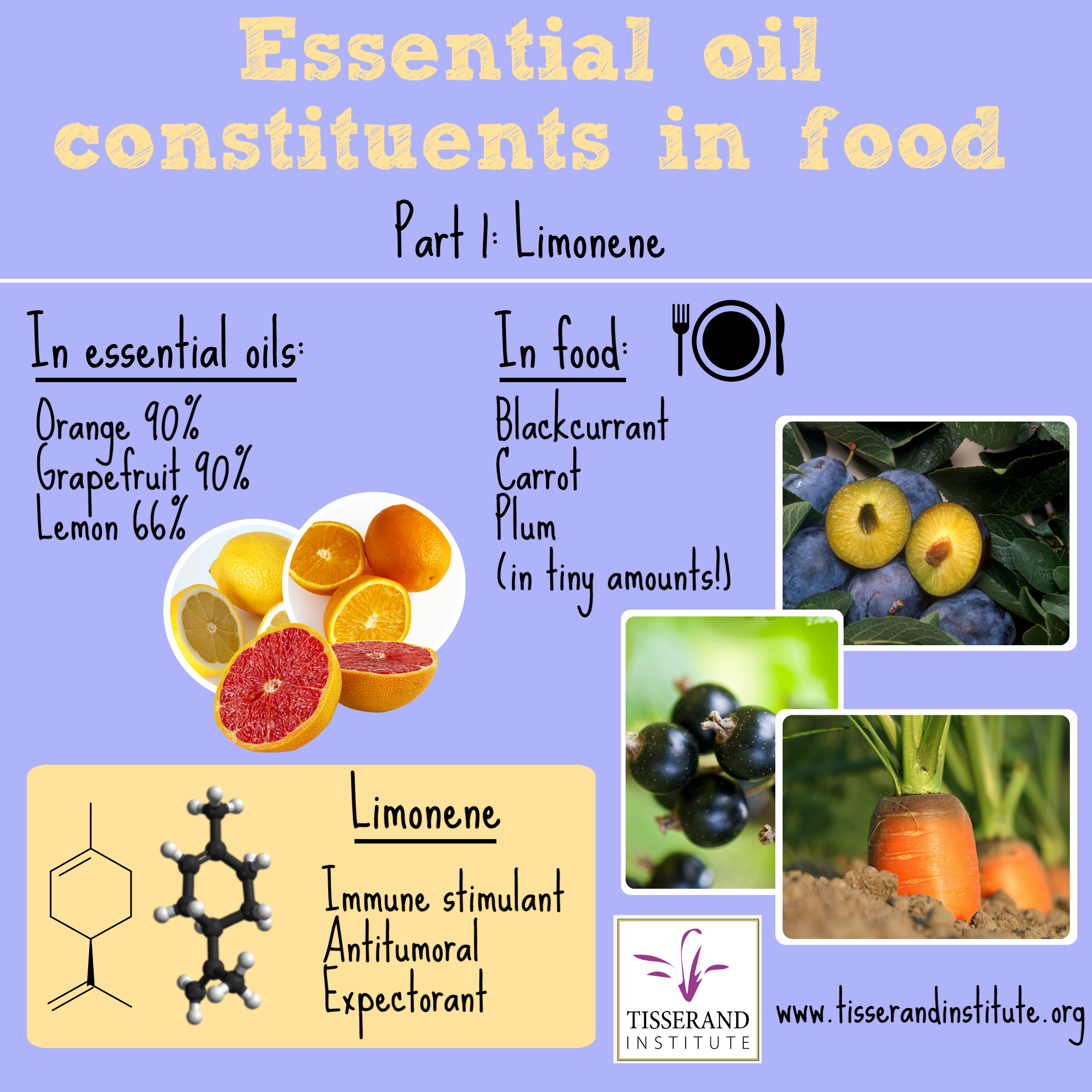 Limonene Essential Oil Constituents in Food Part 1