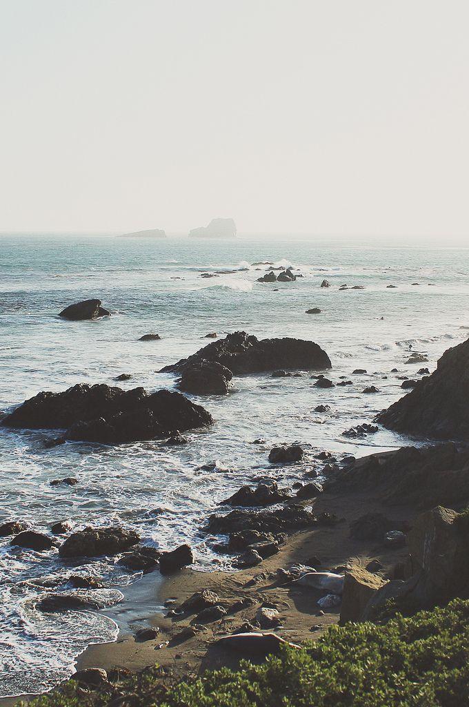 California Shores Flickr