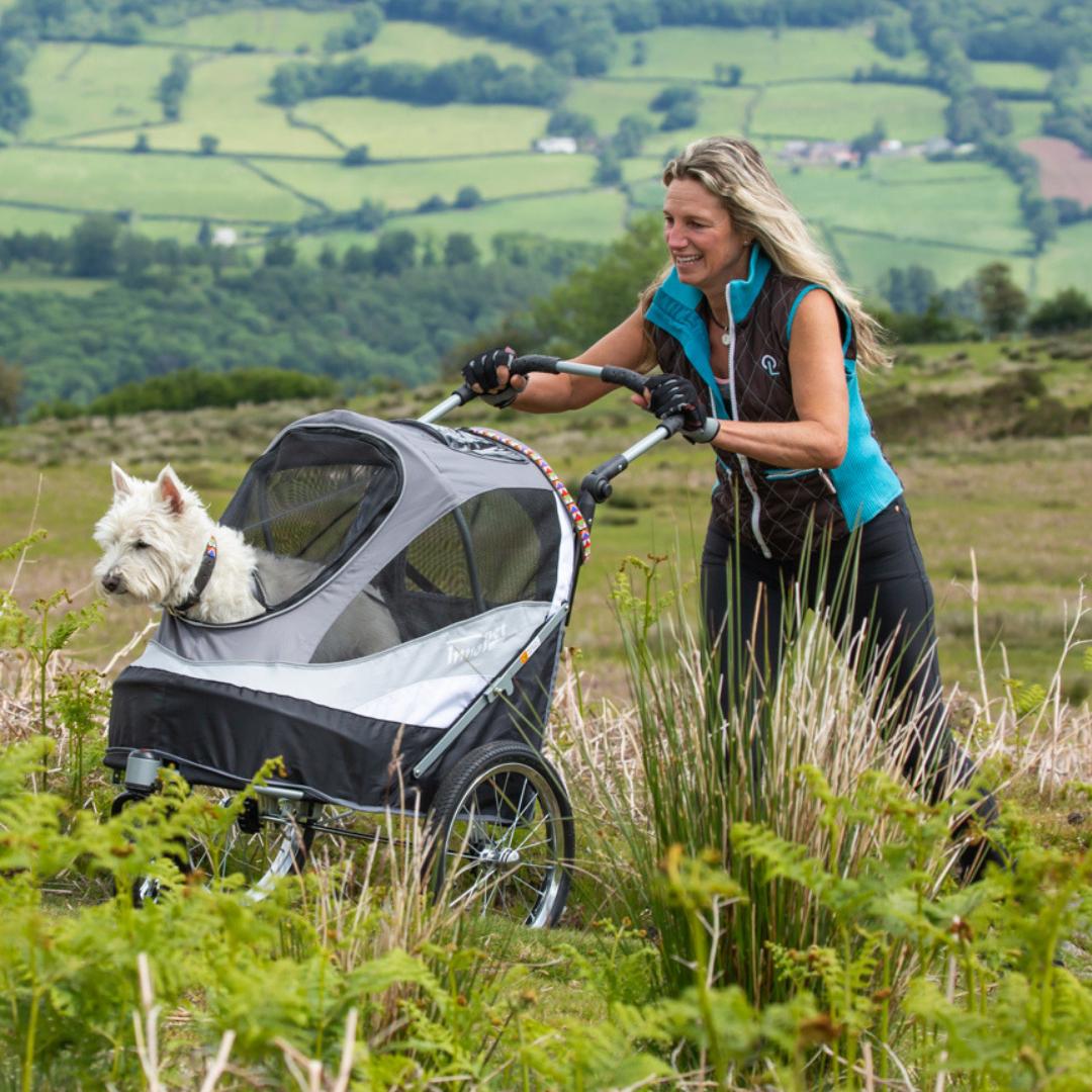 Innopet Sporty Dog Stroller And Bike Trailer Black Free Rain