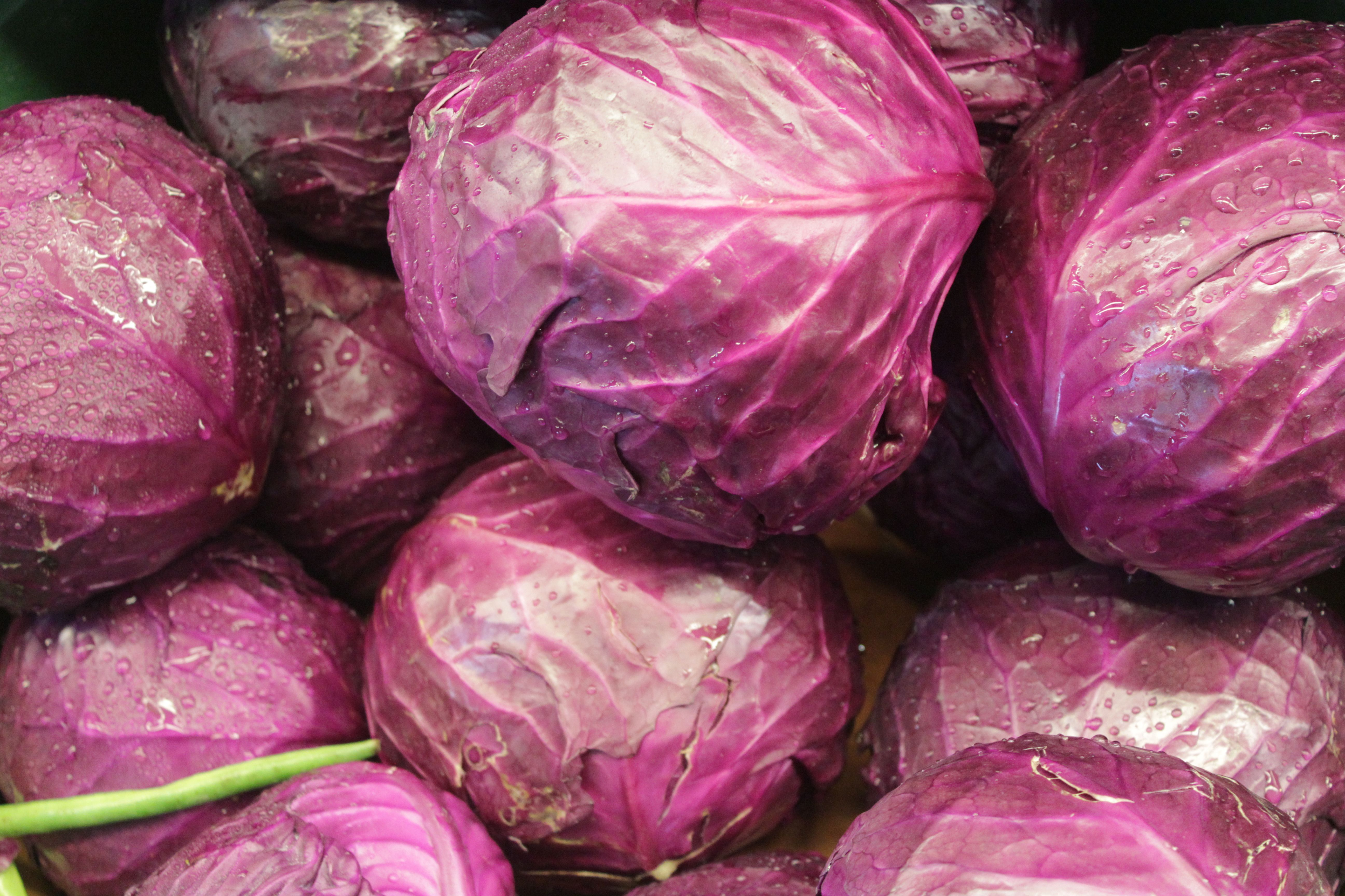 Cabbage! Fresh organic, and mighty tasty, gmo-free CABBAGE! Stop in today and grab a few and add a yummy kick to your salad. Fresh stock added in November 2014