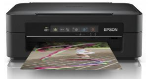 Epson Xp 225 Driver Download Printer Driver Wifi Print Mobile Print Printer