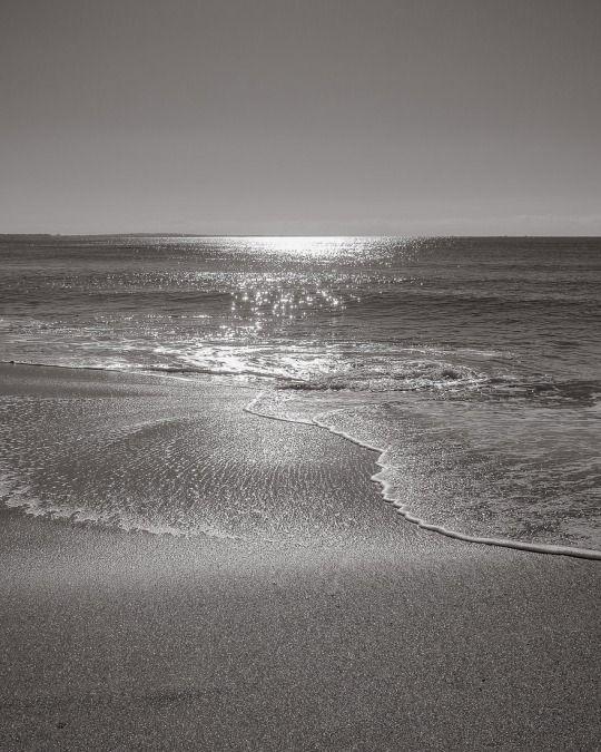 Homage to Mark Rothko. By Shinji Aratani