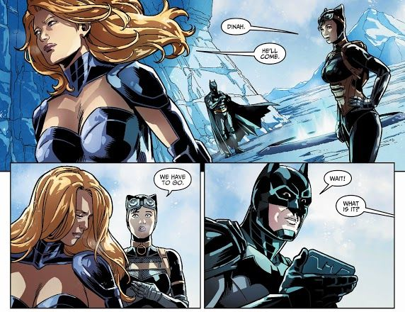 Catwoman vs Black Canary by Tin0men on DeviantArt |Injustice Black Canary Drawing