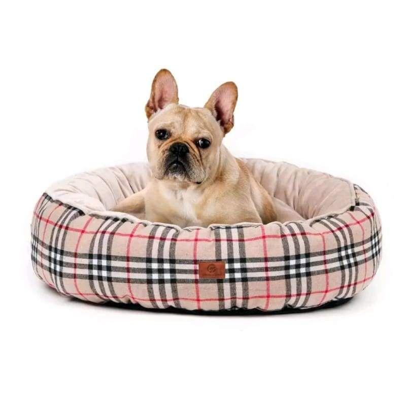 Best Memory Foam Orthopedic Dog Beds Reviews Dog Bed Advisor
