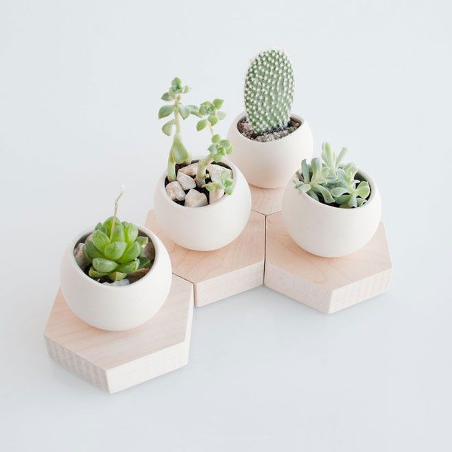 succulent cell planter makes these cheaper by cutting wood and attaching small cups ikea. Black Bedroom Furniture Sets. Home Design Ideas
