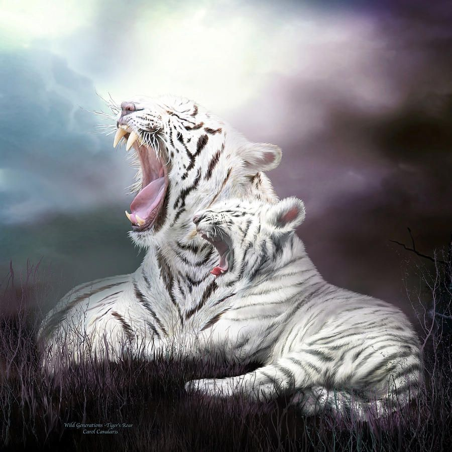 wild generations - tigers roar mixed media | stuff and other stuff