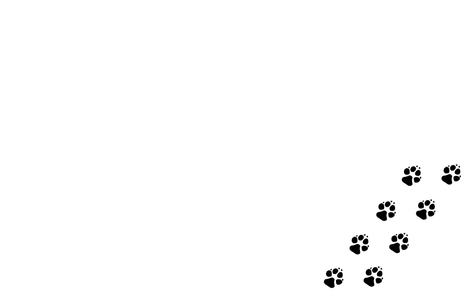 Ihr Hunde Cioffeur Stübli befindet sich im Kanton Aargau in der Schweiz. Wir freuen uns auf Ihren Besuch und verwöhnen Ihren Hund gerne, mit unseren Dienstleistungen, wie Friesieren, Scheren, Waschen, Hunde Baden und Trimmen. Dazu bieten wir noch Hundezubehör und Hundeaccessoires an.Jacqueline Buschor und der Hundesalon in Aargau und Luzern, erwartet Sie gerne.