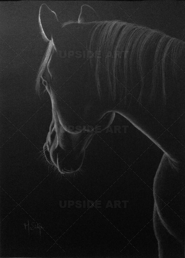 Top 25 best dessin cheval ideas on pinterest cheval dessin anim animaux de bande dessin e - Comment dessiner un pegase ...