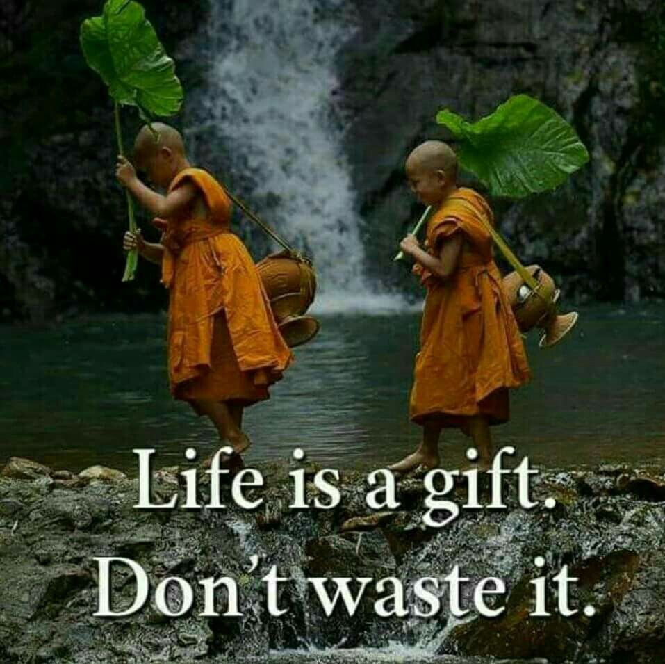 Pin by Malar Tr on My likes in English   Buddhism quote, Buddha quote, Buddhist quotes