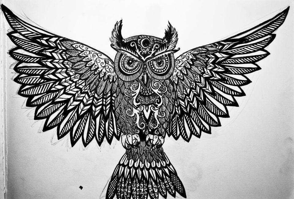 pics for aztec owl drawings. Black Bedroom Furniture Sets. Home Design Ideas