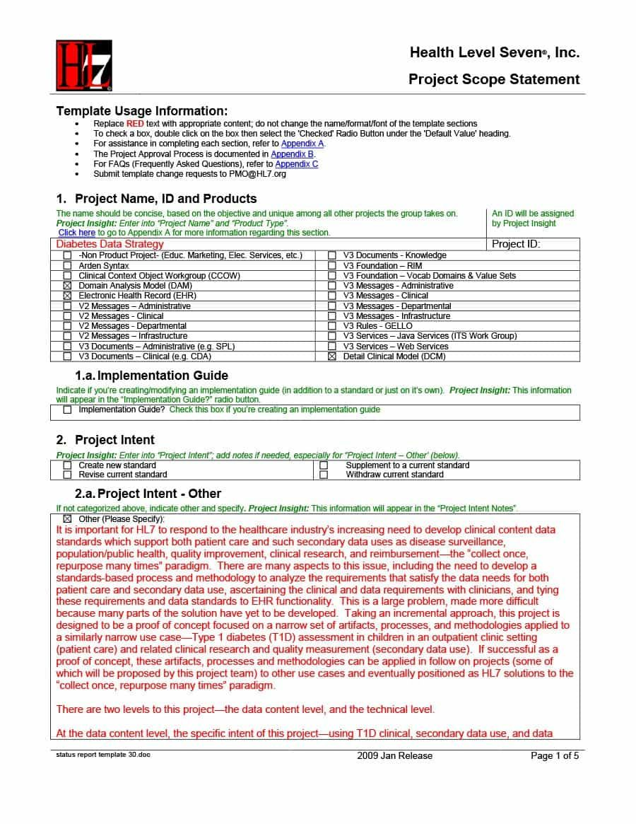 Daily Project Status Report Template 4 Professional Templates