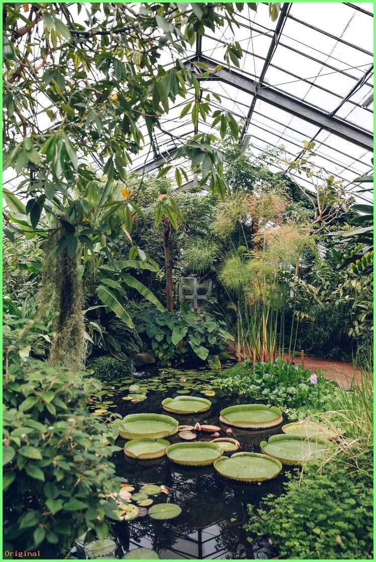 50 Garden Dundee University Botanic Garden From The Haarkon Greenhouse Tour Backyards Botanischer Garten Garten Landgarten