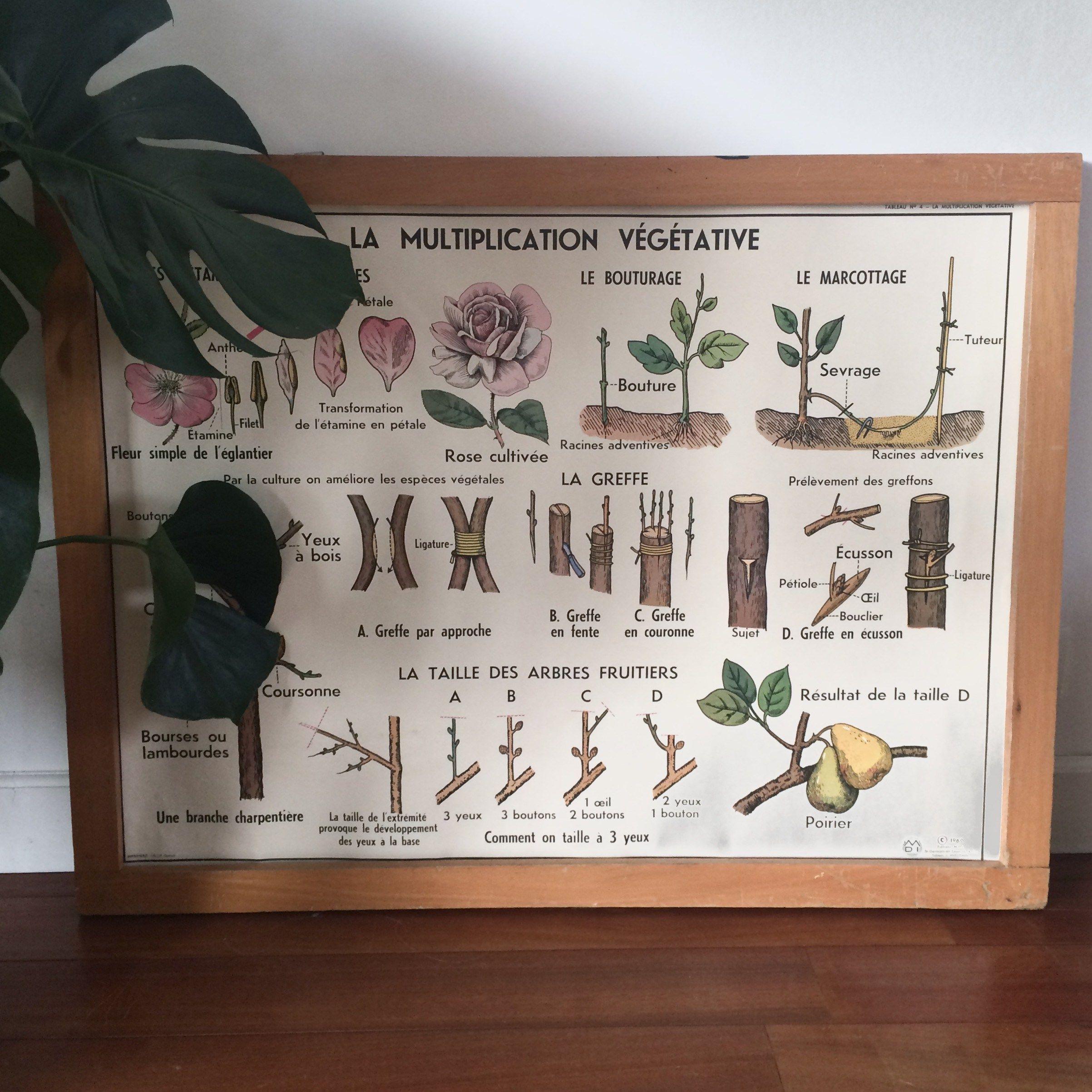 Epingle Sur Vintage Magic