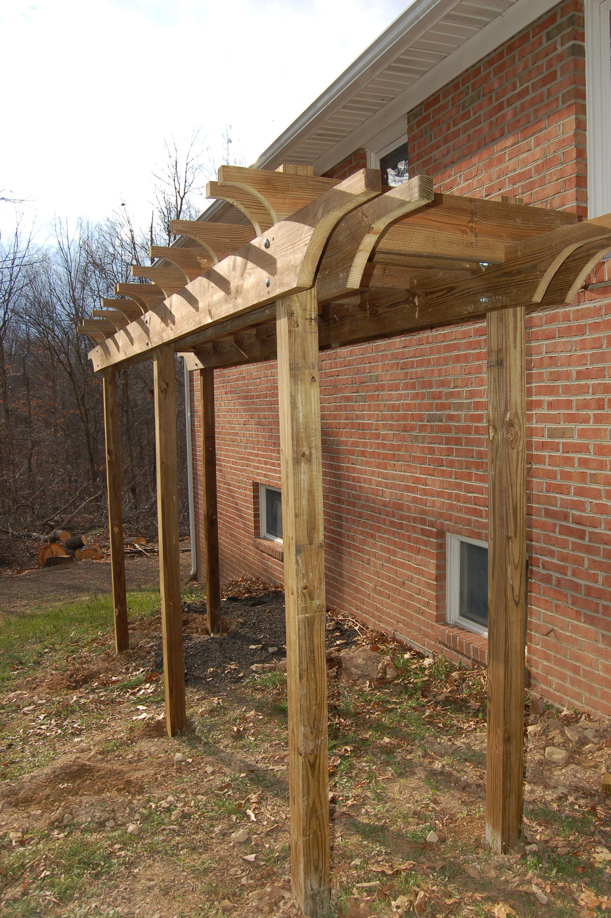 My New Kiwi Arbor Pergola Backyard Landscaping Designs