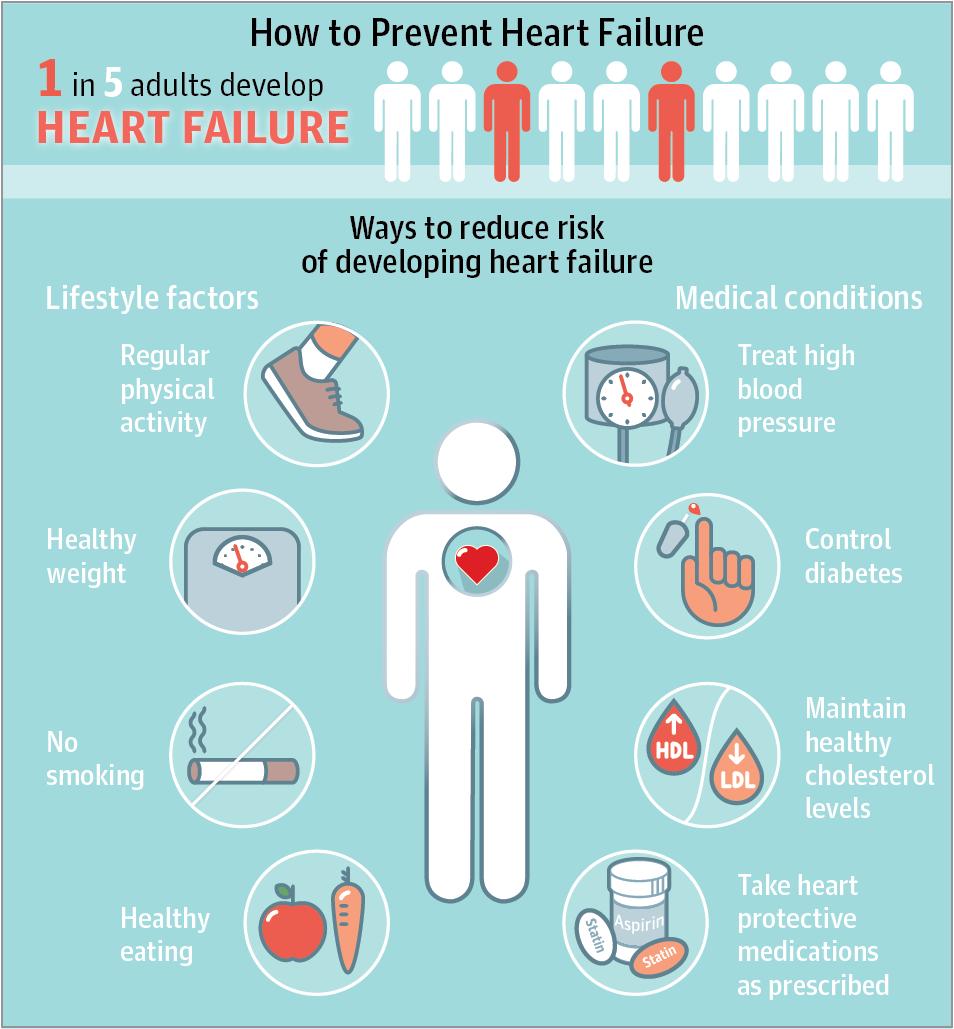 Prevention Of Heart Failure Jama Cardiol Published Online December 7 2016 Doi 10 1001 Jama Heart Failure Treatment Heart Failure Nursing Patient Education