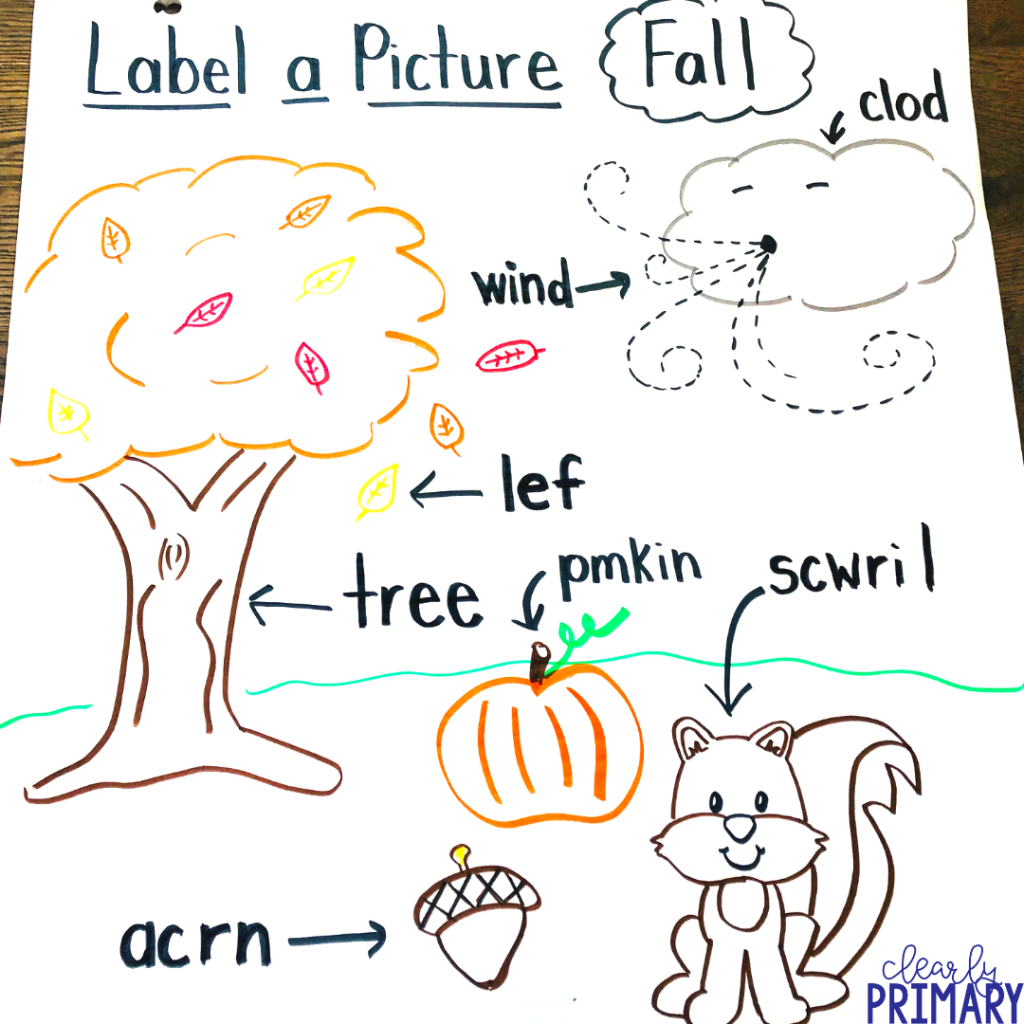 Labeling Pictures In Kindergarten Amp Beyond