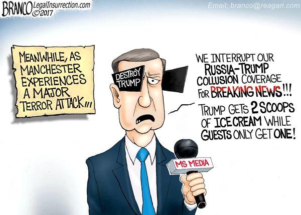 Image result for U.S. mainstream media CARTOON