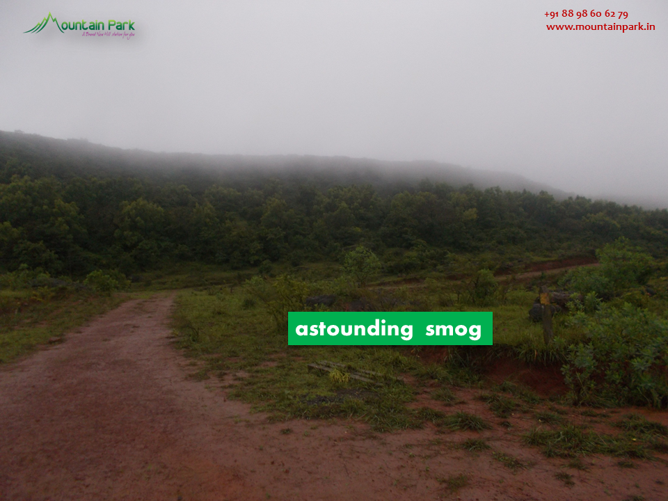 +91 88 98 60 62 79 contact@mountainpark.in www.mountainpark.in