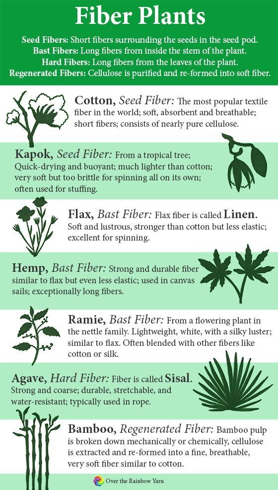 Common Types Of Fiber Plants Cotton Kapok Flax Hemp