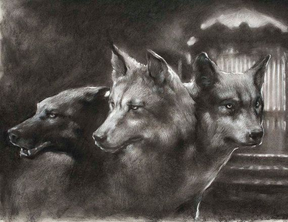 Guardian Of The Gate Cerberus The Three Headed Dog 12 X 18 Art Print Of A Charcoal Drawing Cerberus Art Mythical Creatures