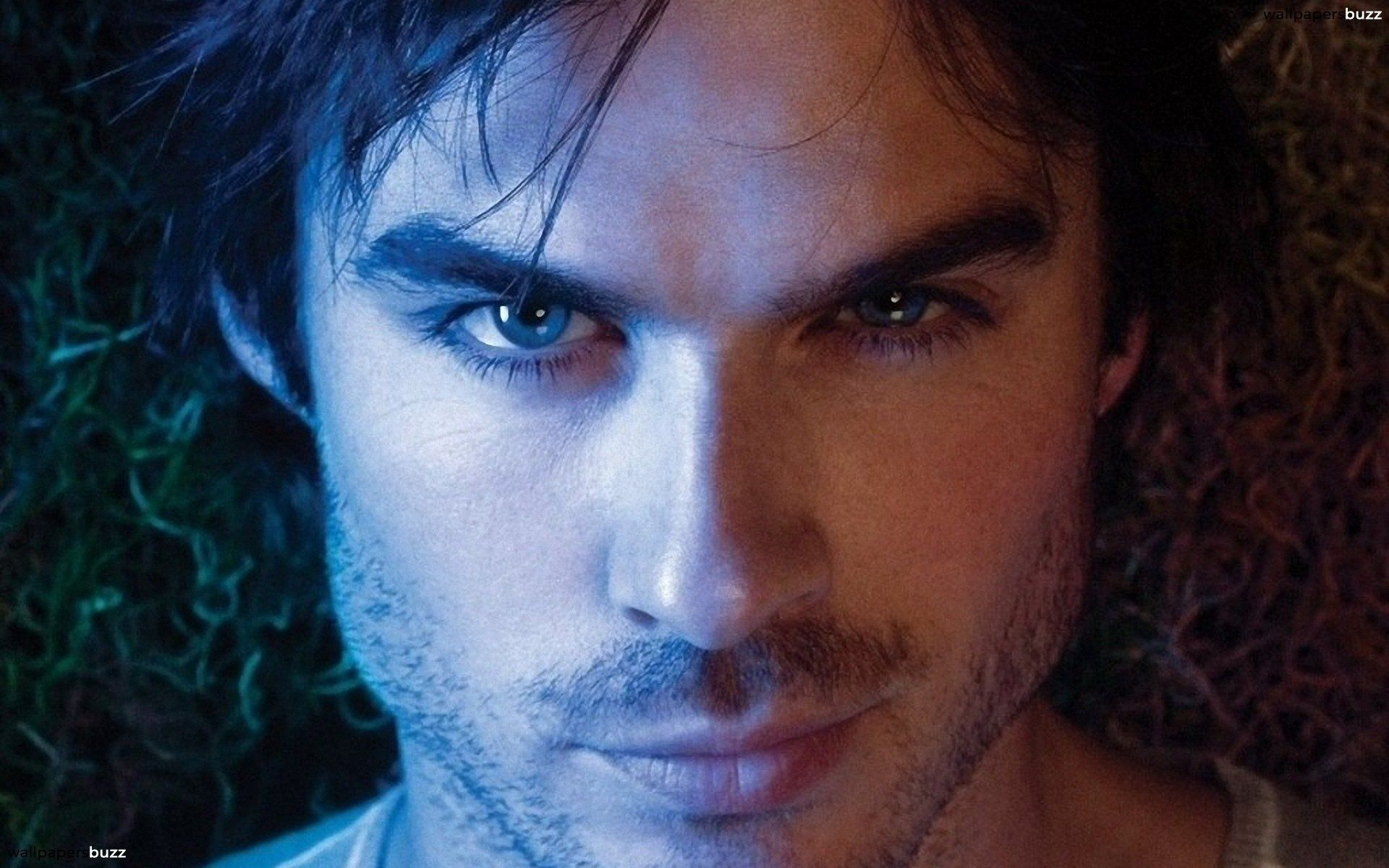 79 Ian Somerhalder Wallpapers On Wallpaperplay Ian Somerhalder Bad Boys Healthy Shopping