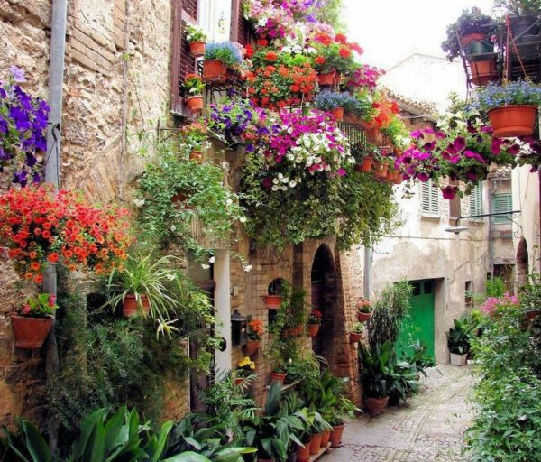 beautiful flowers and planters in a little alley Mother Nature - terrasse blumen gestalten
