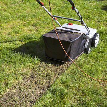 Die 3 häufigsten Fehler bei der Rasenpflege