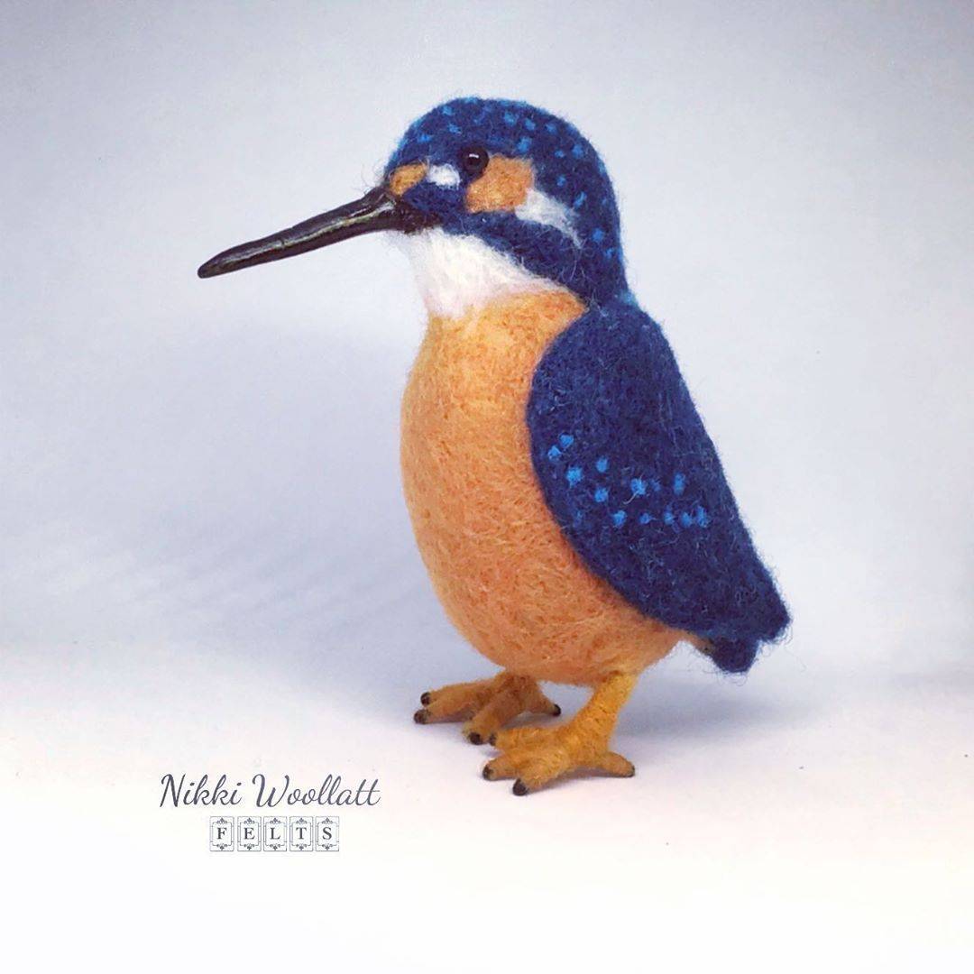 Kingfishers are my favourite bird so often all you see