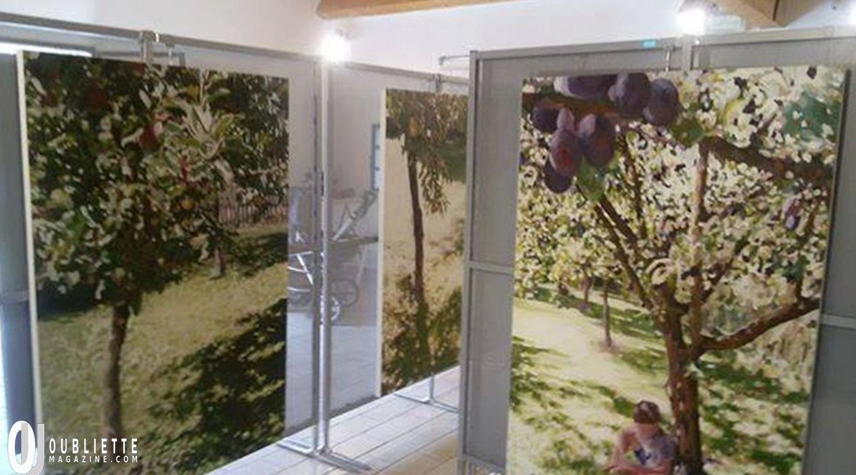 Ida Harm in mostra ad Isola di Albarella: l'albero come simbolo di vita umana