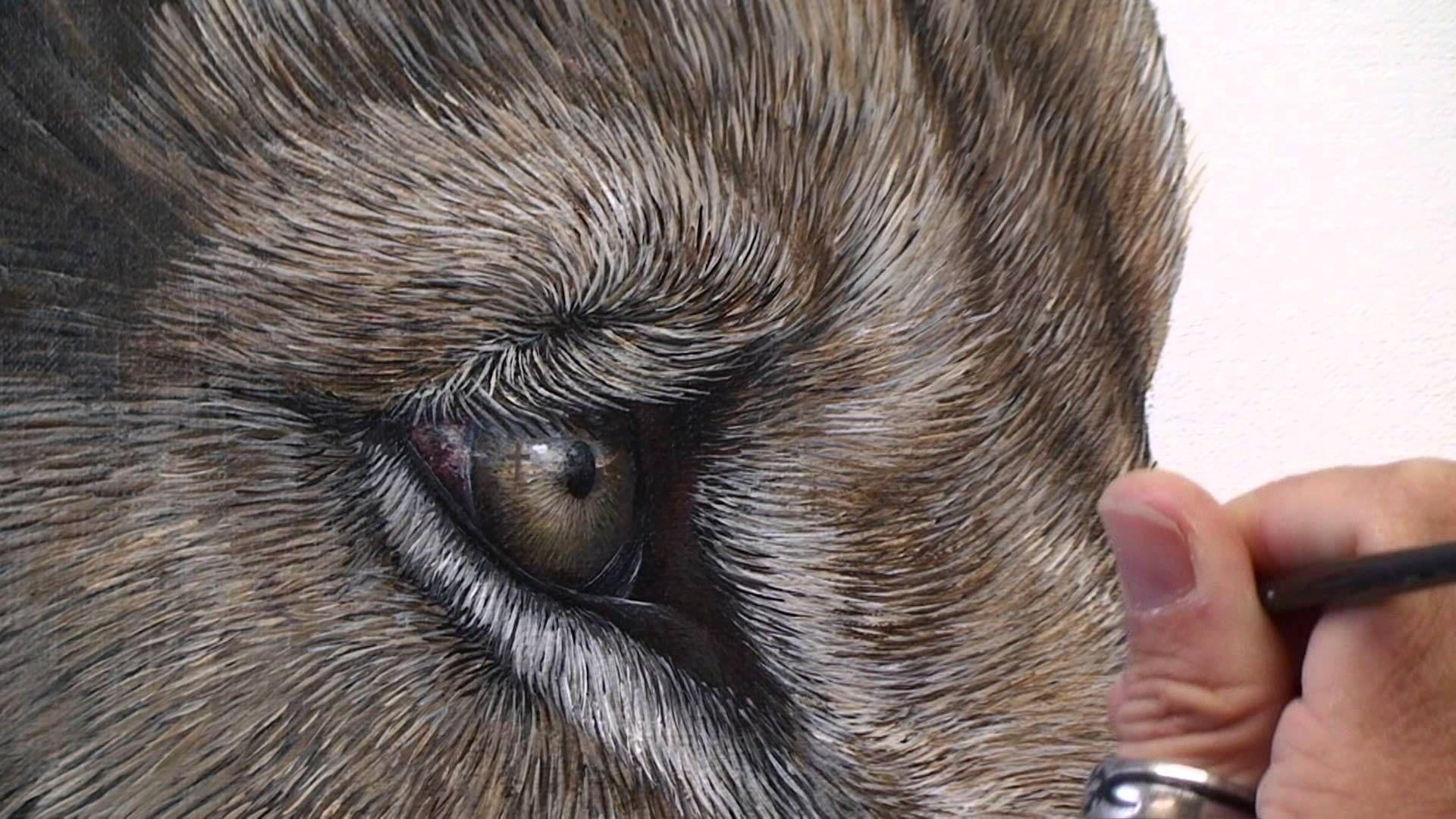 Pin de Cristofher Espindola en MARCEL WITT | Pinterest | Como pintar ...