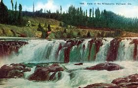 Image result for willamette falls