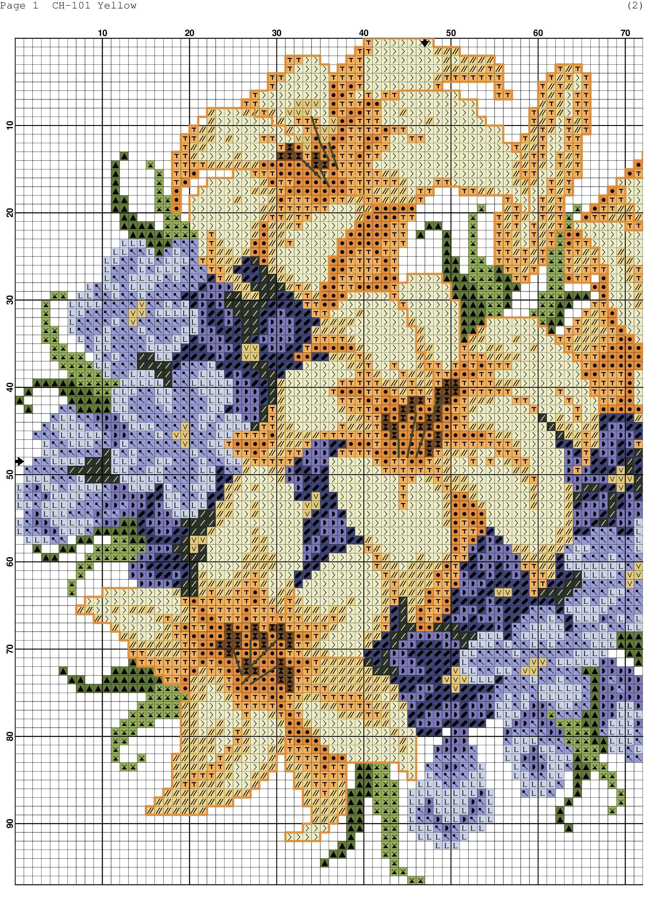 fiori gialli e blu-3