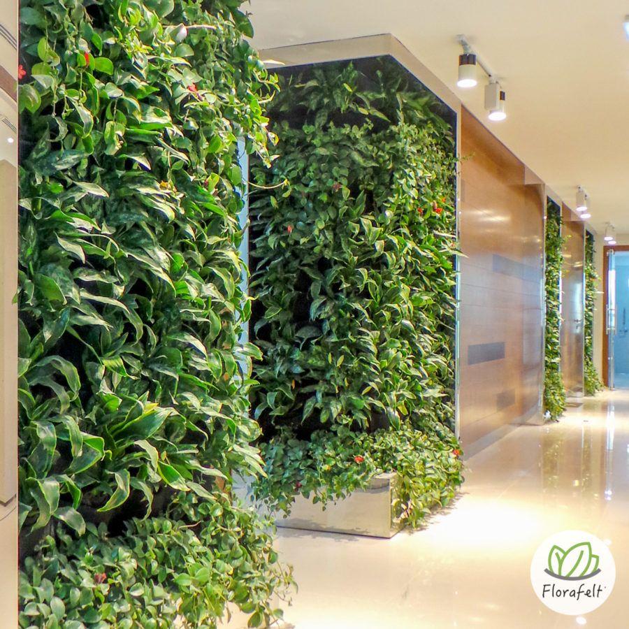 Florafelt Vertical Garden by Terragarden Kuwait (With ...