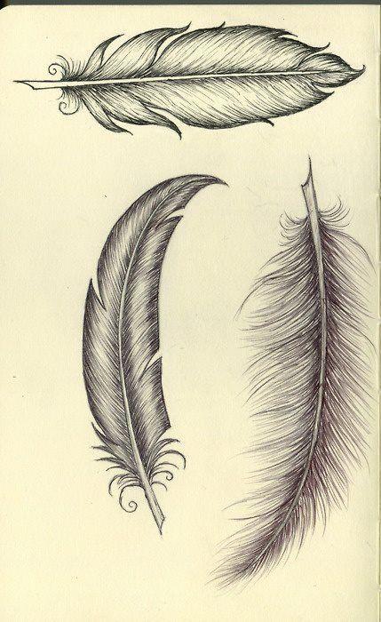 Pin De Tamara Devesa En Animales Plumas Dibujos Tatuajes De Plumas Dibujos